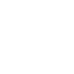 Lovely Strength & Conditioning logo